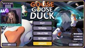 Goose Goose Duck (part 1)