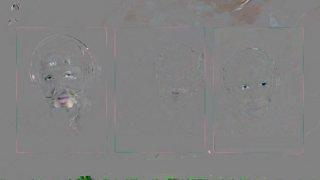 Sarthe's Log Deep Dive of <Rise> & <TURBO BUS> | Raid Masters: Naxxramas Speedrun