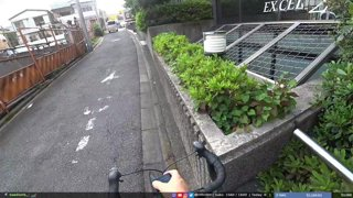 JPN, Tokyo |  your regularly scheduled degeneracy | !socials !documentary