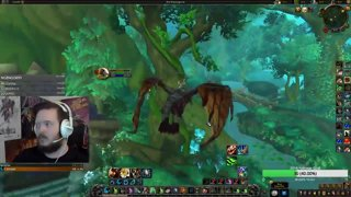 Highlight: 8.1 Feral Overview