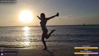 Aruba Caribbean 🦩