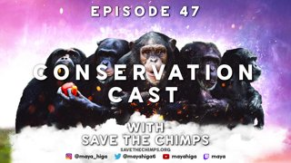CONSERVATION CAST E. 47 with Dr. Andrew Halloran for Save the Chimps