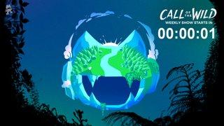 276 - Monstercat: Back to the Wild #COTWRadio #TeamTrees