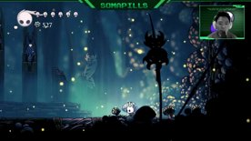 Hollow Knight: The Mantis Lords