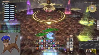 E12S first clear (both fights) - PLD PoV