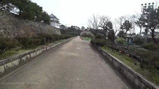 Japan day 28, Nagoya exploring !social !joey