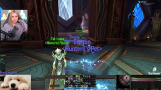 Back to WoW? Checking out Shadowlands 💜