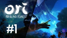 Ori and the Blind Forest | First feel #1