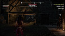 Highlight: GIVING THEM THE GOOD SUCC - (PS4) ESO
