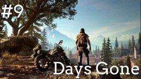 ☢️ČERVENÁ BUDE DNES VŠUDE!☢️ Days Gone #9