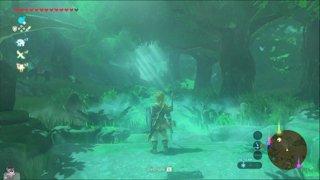 Zelda: Breath of the Wild pt. 8