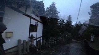 Japan day 57, NARA w/ !Haremi - !yt !social !joey