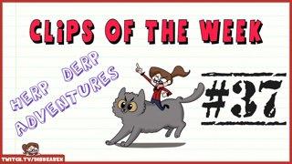 Clips Of The Week #37 - Herp Derp Adventures