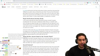 Various Business Topics | Advanced Youtube and Brand Concepts Talk | Mr. Beast Restaurant Chain Analysis |  join discord.gg/devin