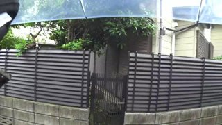 Japan day 107, Lofi Rain mood !project10 !poll !discord !about