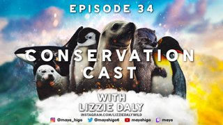 CONSERVATION CAST E. 34 with Lizzie Daly for Black Girls Dive