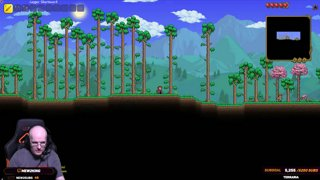 Terraria with Mew2King & Epic_Gabriel (Mew2King's First Time)