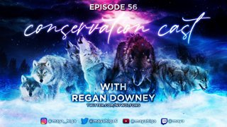 CONSERVATION CAST ep. 56 with Regan Downey for the Wolf Conservation Center
