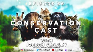CONSERVATION CAST E. 36 with Jordan Veasley for the Giraffe Conservation Foundation