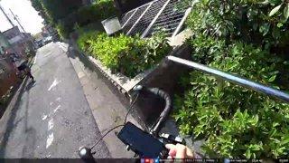 JPN, Tokyo | lovely park then boomer town tour | !socials