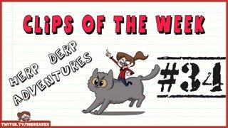 Clips Of The Week #34 - Herp Derp Adventures