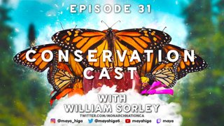 CONSERVATION CAST E. 31 with William Sorley for The Butterflyway Project