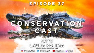 CONSERVATION CAST E. 37 with Laura Kojima for Partners in Amphibian and Reptile Conservation