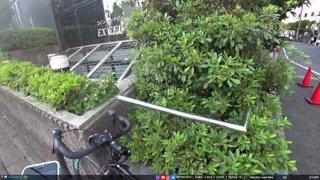 JPN, Tokyo | Climbing Tokyo Tower! Bar hunting later | !socials