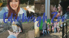 Edinburgh Zoo - VLOG
