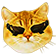 DxCat emoticon medium resolution download link
