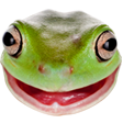 OSFrog emoticon large resolution download link