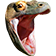 KomodoHype emoticon medium resolution download link