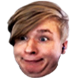 BiersDerp emote download link