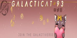 Profile banner for galacticat93