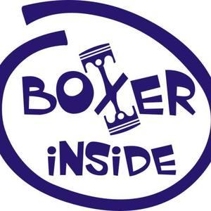 BoxerInside
