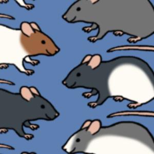 ratstreamdotnet Logo