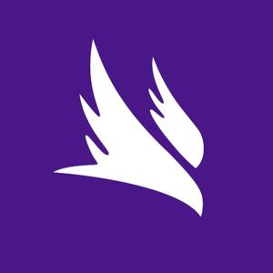 NightHawk_ Logo