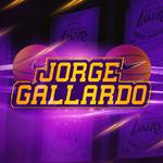 View stats for iJorgeGallardo