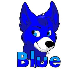 View bluethefoxoffical's Profile