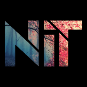 NailedIt_TR Logo