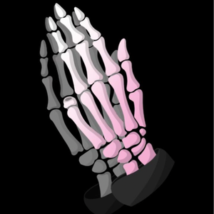prophet_streams Logo