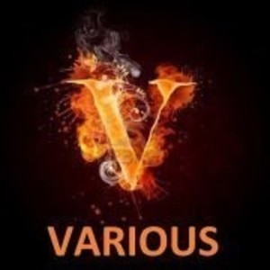 13various31