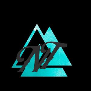 nighttekk_official Logo