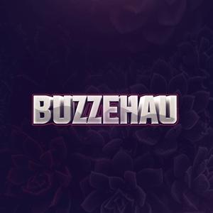 StreamElements - buzzehau