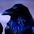 View RavenFaire's Profile