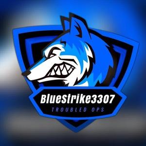 View BlueStrike3307's Profile