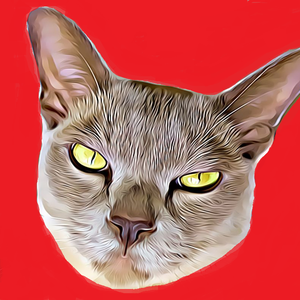 View Jackooz's Profile