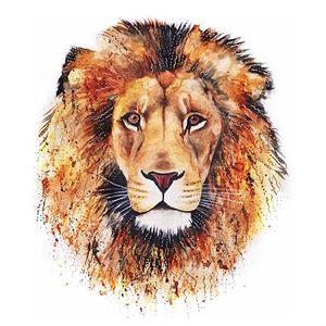 Lionsnipez_