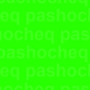 PASHOCHEQ Logo