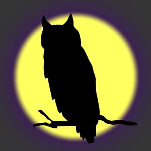 SpookyNightOwl Logo